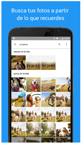 Organízate con Google Fotos